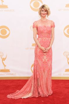 Red Carpet Glamour at the 2013 Emmy's