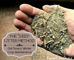The Deep Litter Method aka Chicken Coop Winter Composting