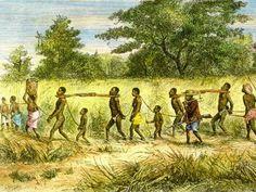 slaveri reaserch, slaveri trade, slave trade