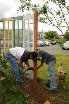 reusing glass doors from a for funky decor in garden - maybe one day when we have a bigger place