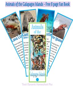 Free 8 page Fan Book -  Animals of the Galapagos Islands | Tina's Dynamic Homeschool Plus     #southamerica  #galapagos  #homeschool  #ihsnet