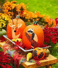 Put woodland-theme pumpkins together with seasonal accents, such as gourds, mums and a colorful blanket, to create a scene like the one on the cover of our September/October 2013 issue. Instructions and FREE templates: http://www.midwestliving.com/homes/seasonal-decorating/pumpkin-decorating-projects/page/2/0