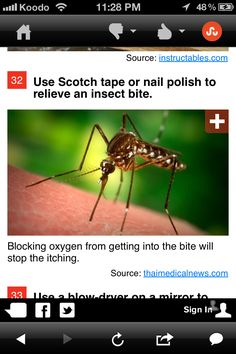 Stop mosquito bites from itching