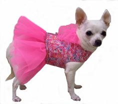 Pretty In Pink Small Dog Clothing