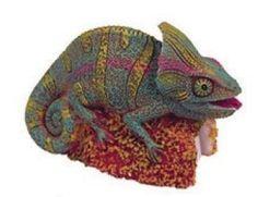 pencil sharpen, veil chameleon, toy store, chameleon pencil
