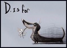 D is for Dachshund