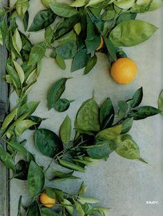 Oranges | Roland Bello