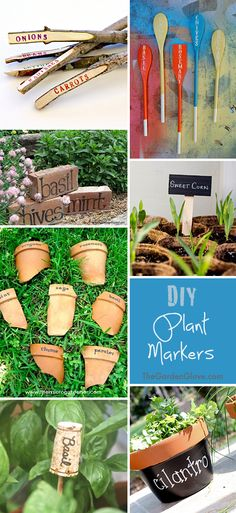 DIY Plant Markers • Ideas & Tutorials!