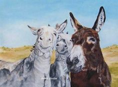 Wild Bunch Donkey Mules Trio Giclee Canvas Fine by grandhorse