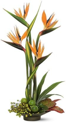 flower arrang, memori, floral arrang, centerpiec, floral design, bird of paradise, flowers, birds, tropic flower