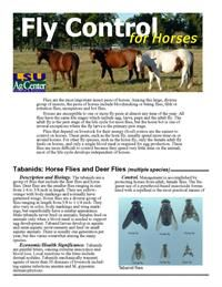 Fly Control for Horses