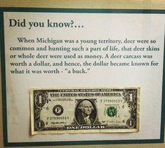 Random fact.
