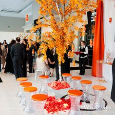 Anne Anderson Events Inc. tree, color