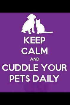 Cuddle Your Pets Daily