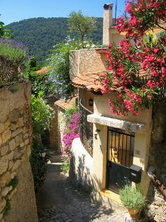 Narrow street in French village