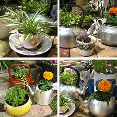 tea kettle pan planters