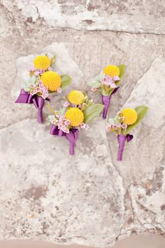 billy button boutonnieres wrapped in purple ribbon, photo by Ivy Weddings http://ruffledblog.com/zilker-park-clubhouse-wedding #grooms