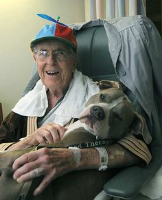 Daisy Mae, another former dogfighting dog who cuddles with the elderly and frail, and even allows small children to hold her tight when they are undergoing painful medical procedures.