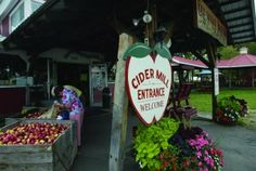 Cold Hollow Cider Mill/Wine Tasting