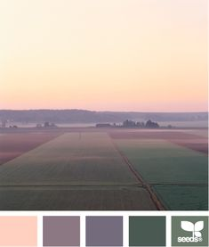 Misty Hues: Muted Pink, Faded Plum, Wisteria Purple, Forest Green Dusty Wintergreen