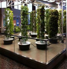 Ohare Urban Garden ohar airport, vertic garden, tower garden, urban garden