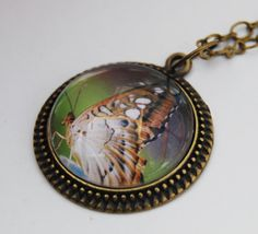 Butterfly pendant necklace  photo with glass by NewCreatioNZ, $23.00