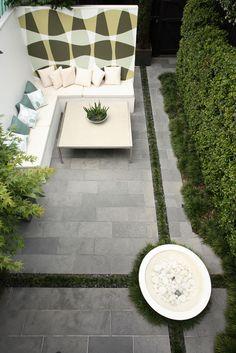 small, modern garden