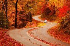 Blue Ridge Parkway #ridecolorfully