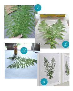 Your favorite botanical as wall art DIY