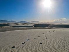 White Sands, New Mexico. Photo courtesy of Scott Speiser.