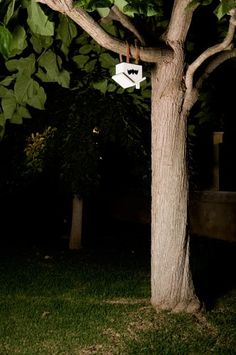 10 creepy crafty awesome bat houses for your backyard