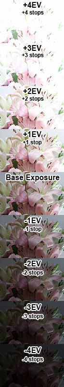 Exposure variations via Photography 101.4 – Exposure and Stops