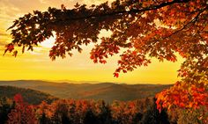 Fall Images of Vermont
