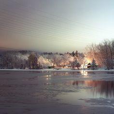 Ann Arbor, MI: Didn't realize Ann Arbor was this pretty!