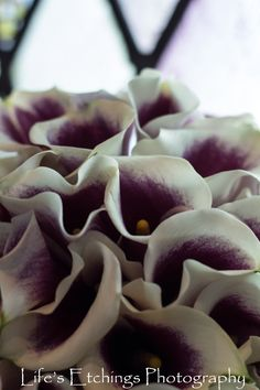 Purple Calla Lily Wedding Bouquet - Life's Etchings Photography