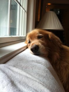 Waiting for you to come home