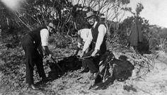 Picnic on Narrow Neck, Katoomba 1922