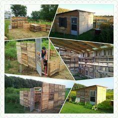 My pallet goat house