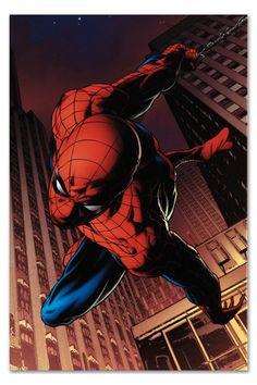 Amazing Spider-Man #641 by Joe Quesada