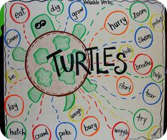 Read non-fiction story about turtles and chart all the valuable turtle verbs. Students make their own verb turtles.