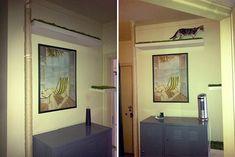DIY Giant Cat Scratching Post!