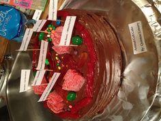 Animal Cell Cake