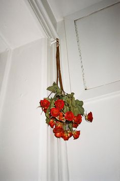 Hanging Roses Out To Dry