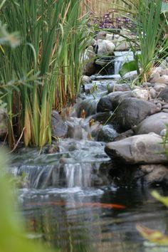 water gardens, pond garden, waterfal pond, garden fall, garden waterfalls