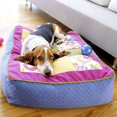 Lucky Dog! Use an old sofa cushion to make your dog a bed.  How comfy...thoughts...sew a fleece lined tablecloth under the top piece so if doggie has an accident it wont soak into the cushion and of couse velco the back so you can wash the cover