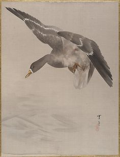 Duck  Watanabe Seitei  (Japanese, 1851–1918)  Period: Meiji period (1868–1912) Culture: Japan Medium: Album leaf; ink and color on silk Dimensions: 14 1/8 x 10 3/4 in. (35.9 x 27.3 cm) Classification: Painting