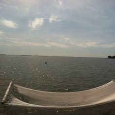 Chesapeake Bay <3