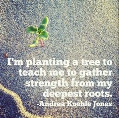 I'm planting a tree to teach me to gather strength from my deepest roots. -Andrea Koehle Jones #quotes #inspiration #instagram #strength #roots