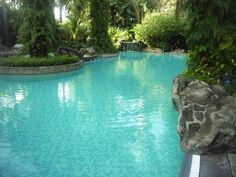 Natural Homemade Swimming Pool Cleaners