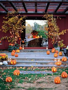 Mini carved pumpkins create a wow-worthy entrance to this Halloween party. More ideas for Halloween parties: http://www.bhg.com/halloween/parties/?socsrc=bhgpin092212pumpkinbarnentrance    #Halloween #HalloweenIdeas
